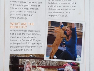 Simply Soulful Goat Yoga_Top Sante Magazine